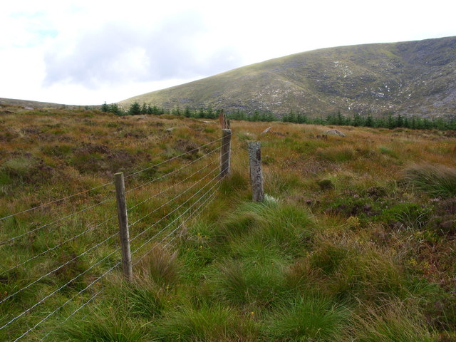 Fence on the Louran Rig