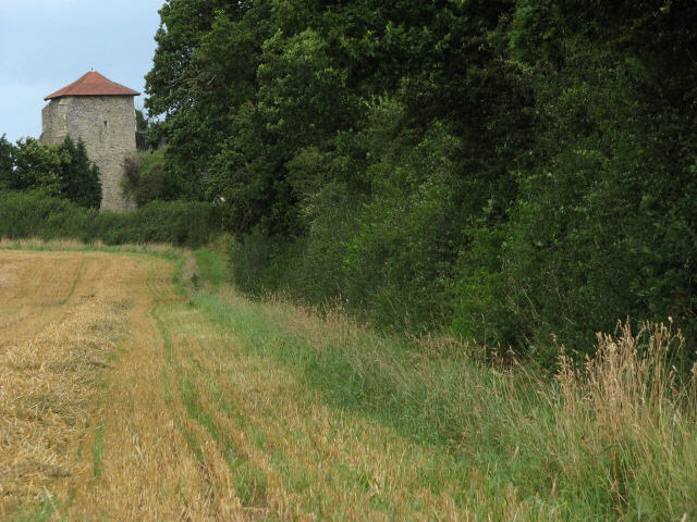 Public footpath to All Saints church, Crostwight