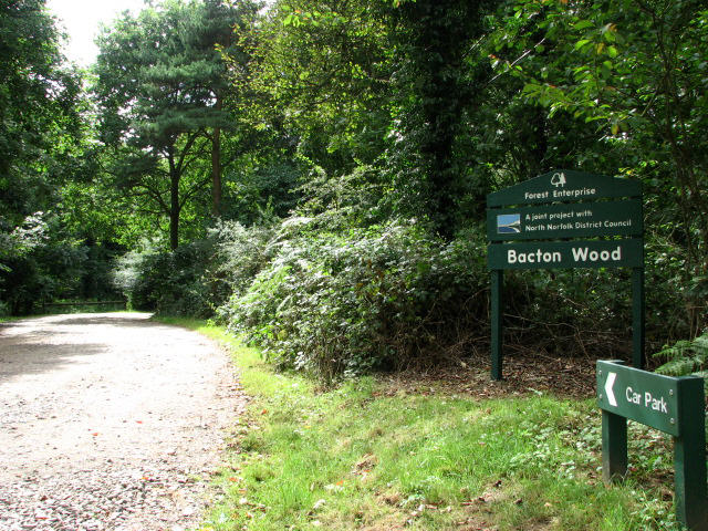 Bacton Wood, entrance to car park and picnic area
