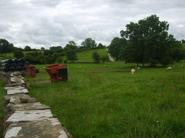 Farming at Winton