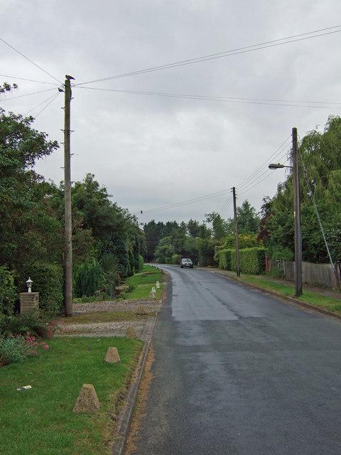 Common Lane, Welton