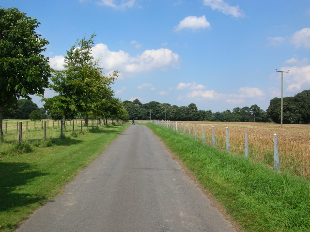 Lane from Myton to Helperby