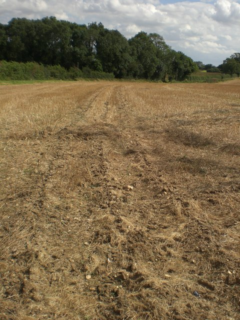 Sub-surface cultivation near Broomsthorpe