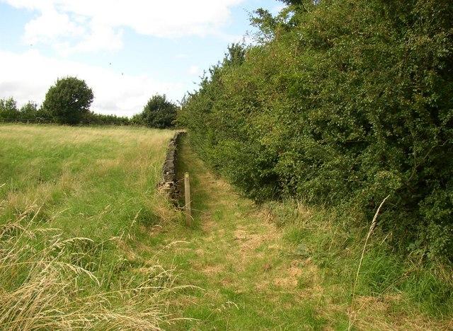 Footpath to Lathe Hall, Cleckheaton