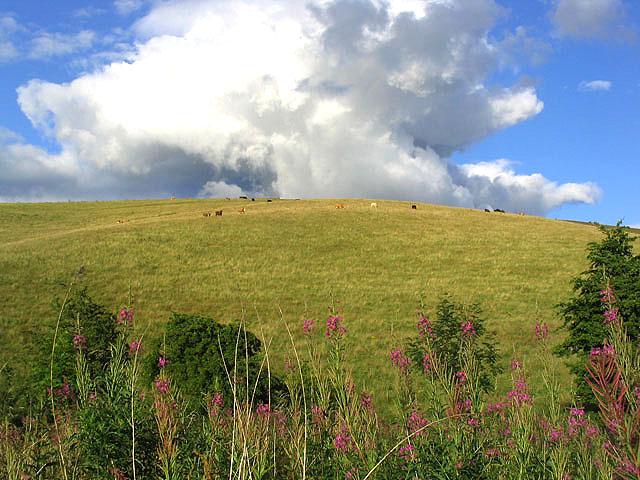 Huntshaw Hill