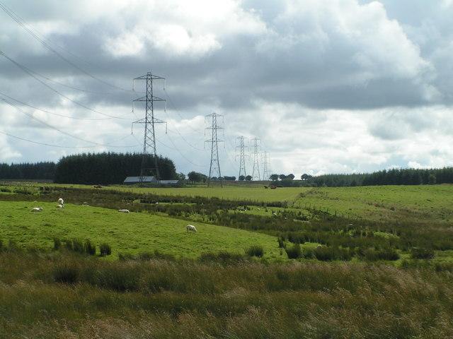 Line of pylons