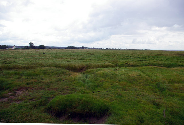 Saltmarsh near east Howcreek