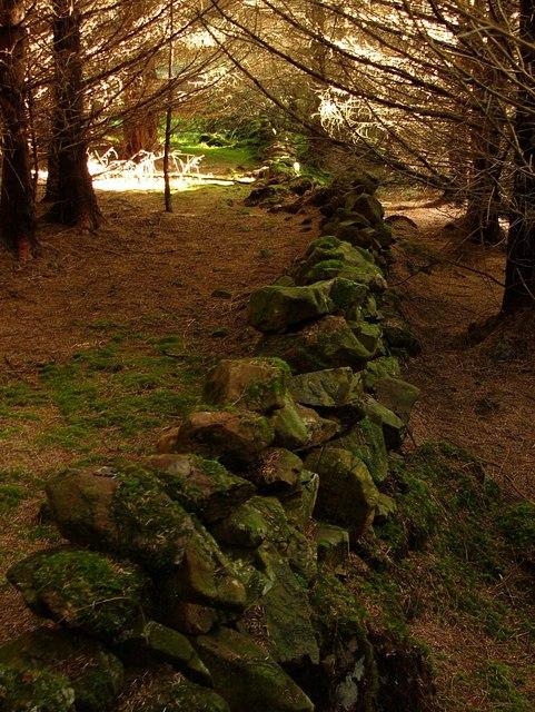 Old wall near Low Eldrig
