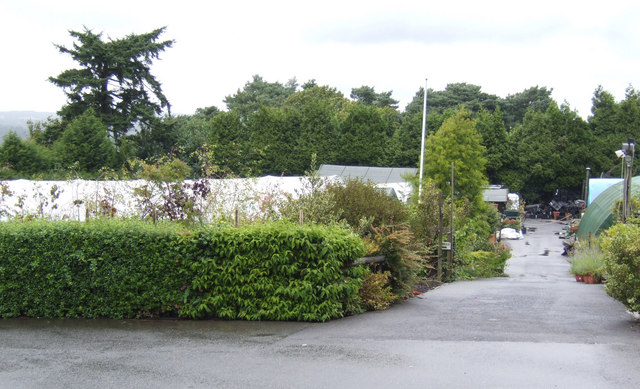 Shanks Nursery and Plant Centre