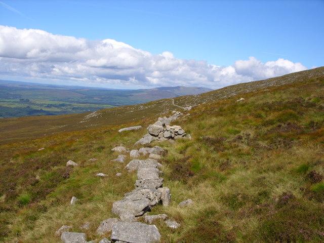 Old Drystone Dyke.