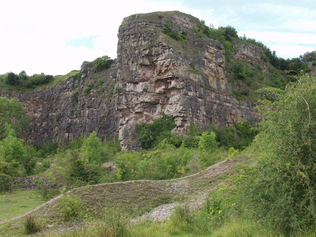 Outcrops in Llanymynech limestone quarry