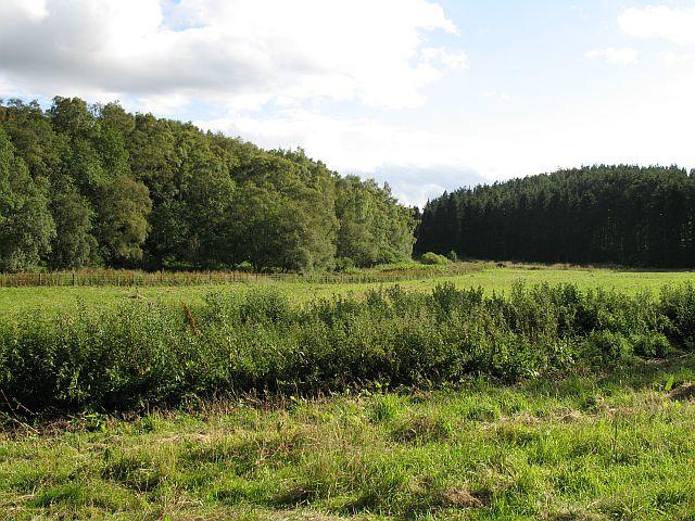 Newly mown fields, Braetown