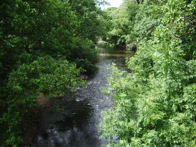 River Ellen