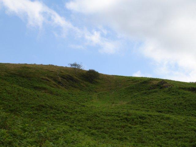 Kingsland Pits