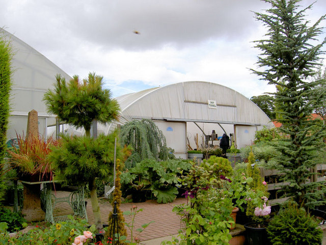 Plants of Special Interest (PSI) garden centre.