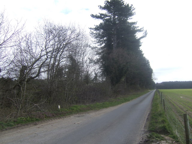 The Bodney road - view east