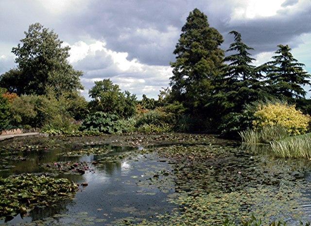 Hyde Hall - Top Pond