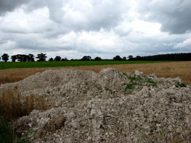 Farmland near Tops Hill Farm