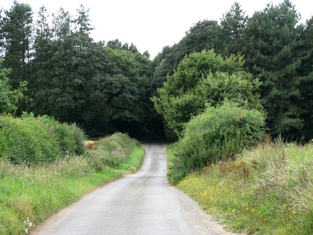 Approach to Old John's Wood
