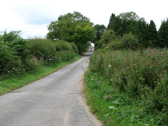 Leaving Old John's Wood