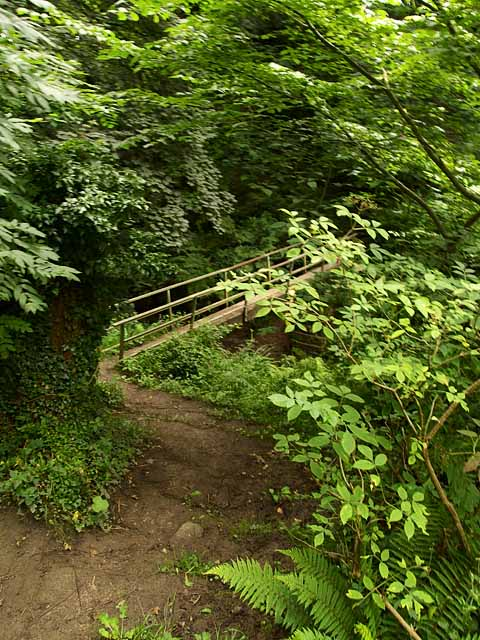Footpath and footbridge, Overdale