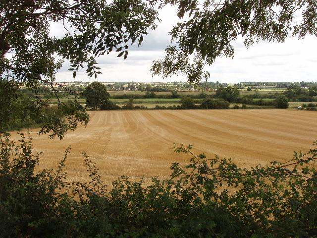 Wheat field and the Ouse valley