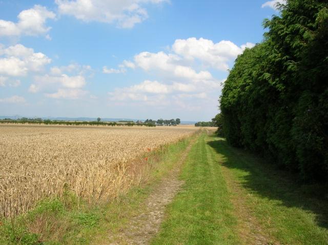 Farmland - Burton Grange