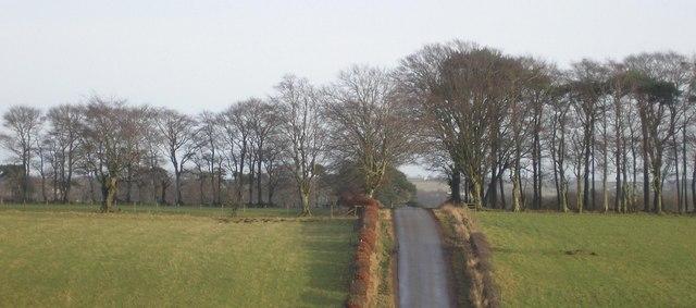 Low Kype Road