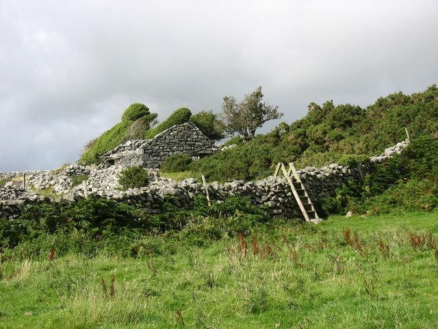 The ruins of Cae'r-llwyn