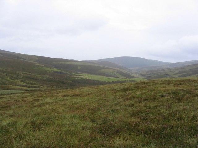 Glenfiddich Forest