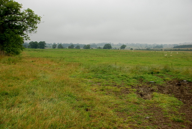 Track of Roman Road