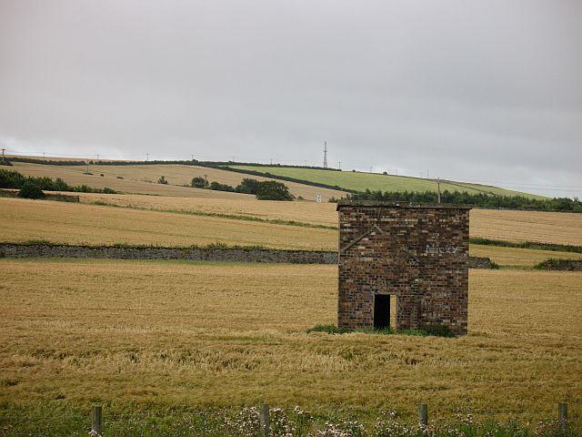 Ruin and barley