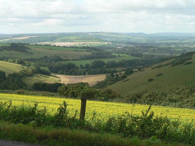 Contrasting views down Longcombe Bottom (4)
