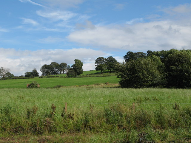 Pastures and woodland near Cocklaw
