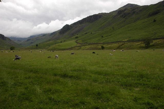 Eskdale viewed from Brotherilkeld