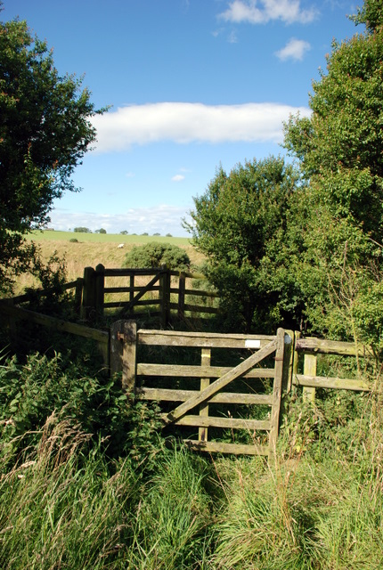 Gates on the bridleway