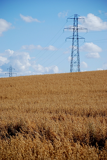 Pylons and barley