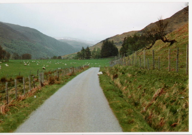 The road to Glenmeanie