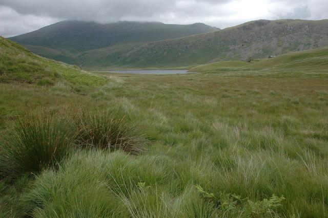 Marshy ground below Ill Gill Head