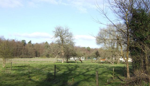 Fields behind Heathcote