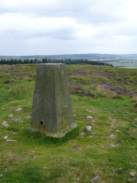 Titlington Pike trig