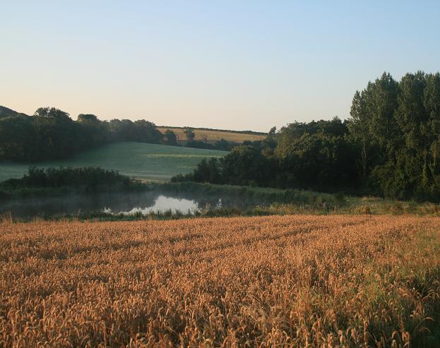 Lower Sturthill Farm lake