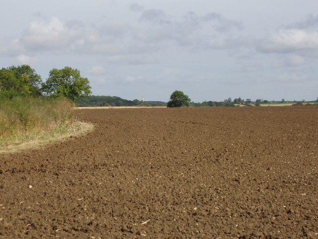 Ploughed field by Bearshank Wood, near Oundle