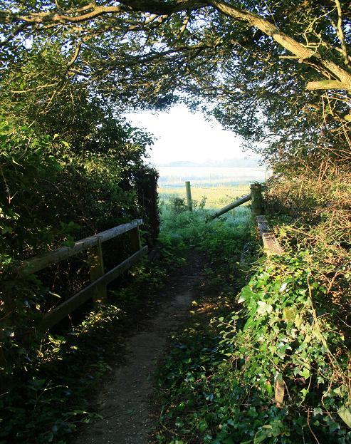 Footbridge on footpath