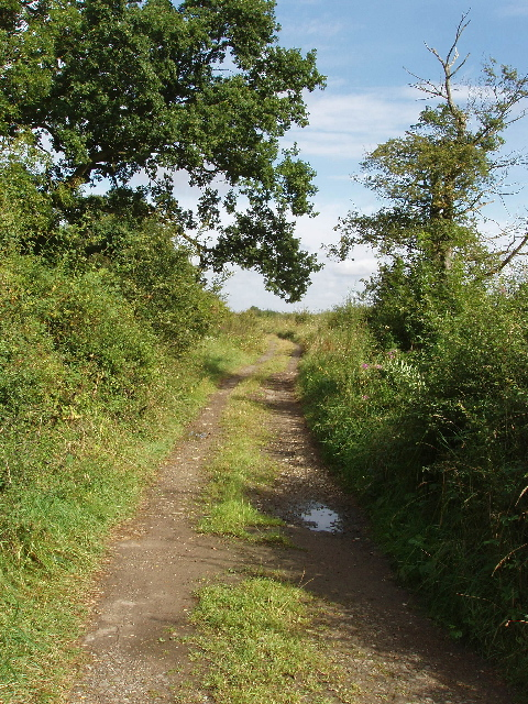 Byway by Winning Foot Hill near Oundle