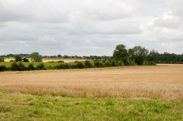 Arable farmland