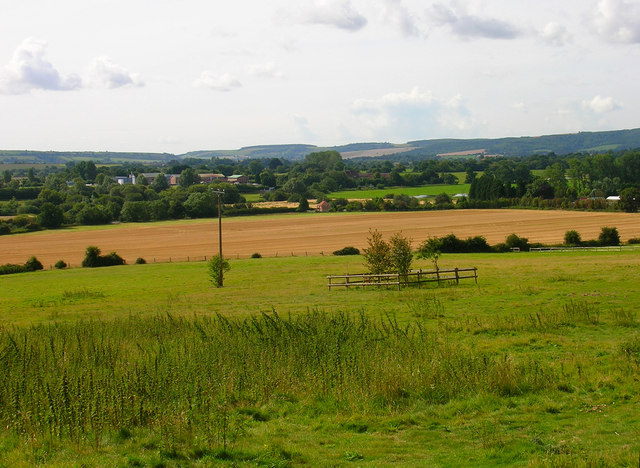 View from Pulborough Park Plantation