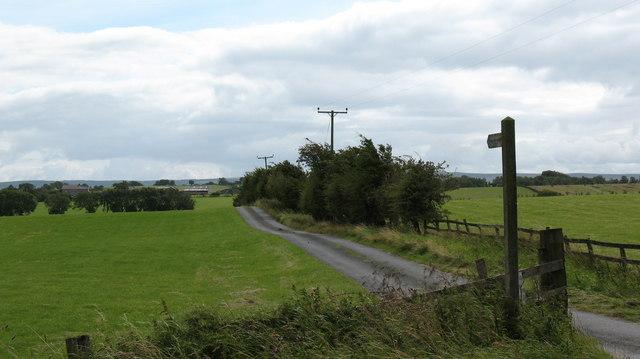 Farm Road and Bridleway, Lartington Green.