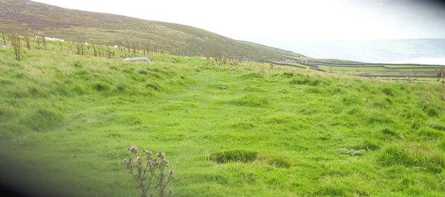 Farm track at Ismynydd