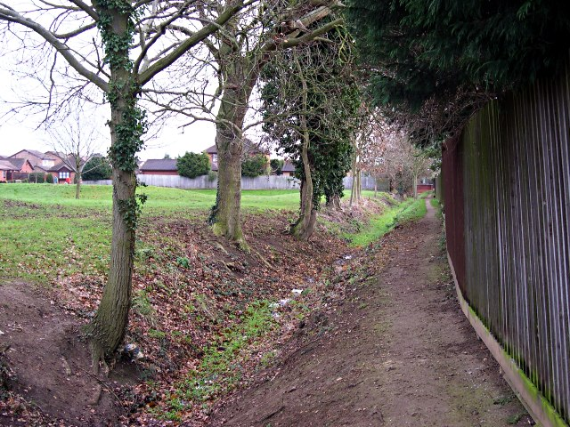 Footpath from Bourne Woods